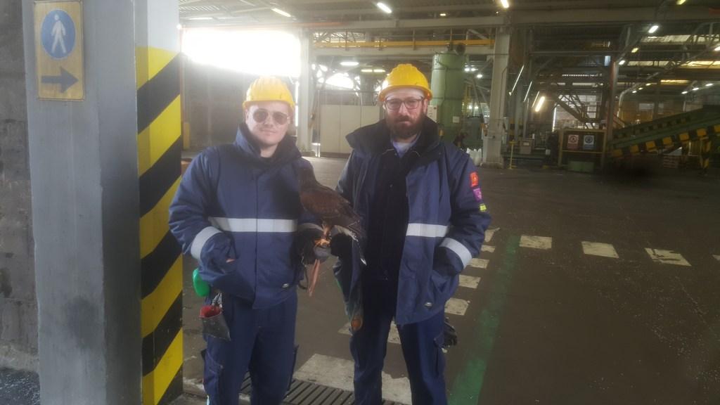 Falconieri alla raffineria ENI di Taranto