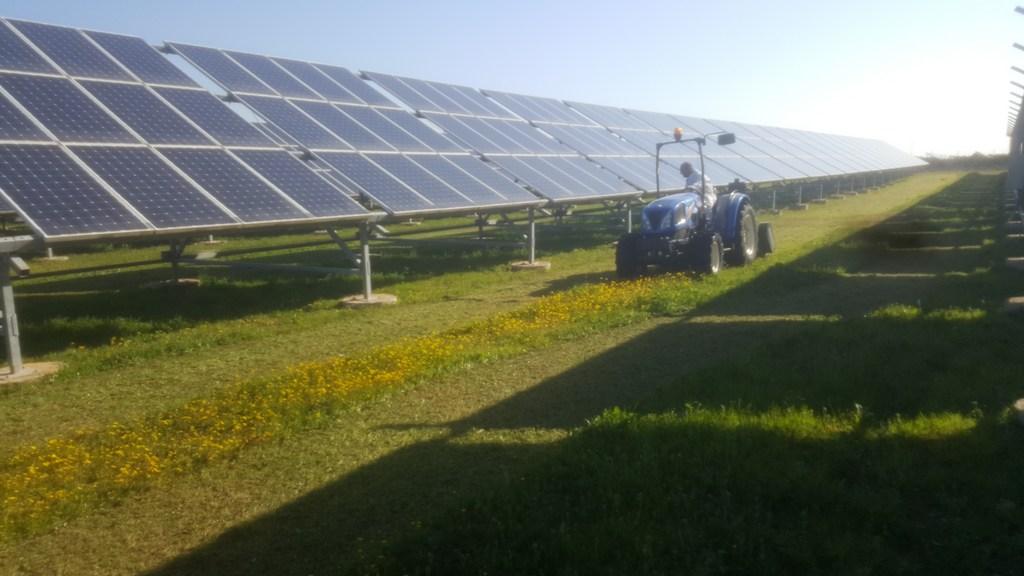 Manutenzione erba campi fotovoltaici